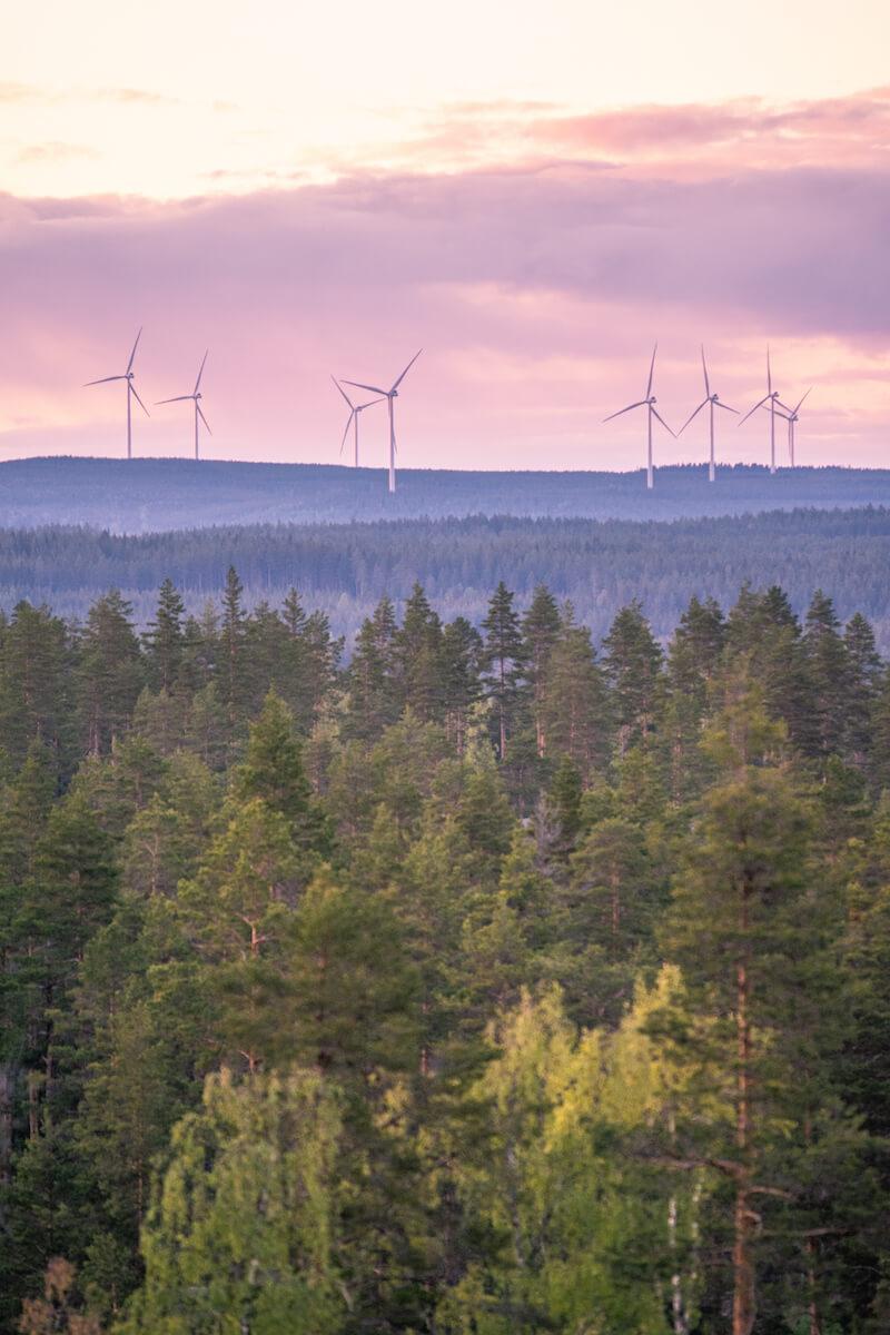 Skog Och Vindkraftverk